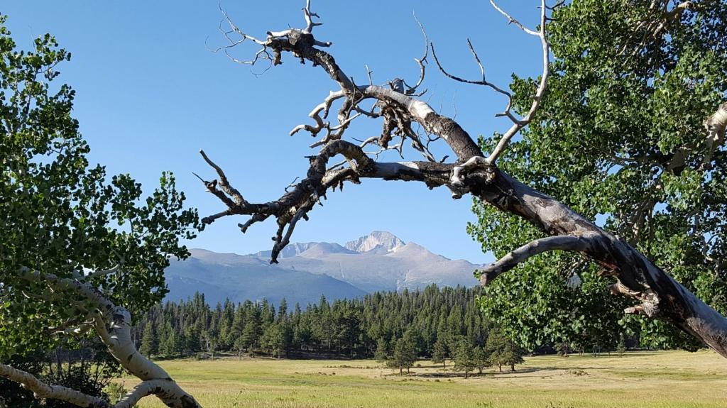 Long's Peak from Lower Beaver Meadows, RMNP