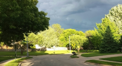 Gray skies/green trees