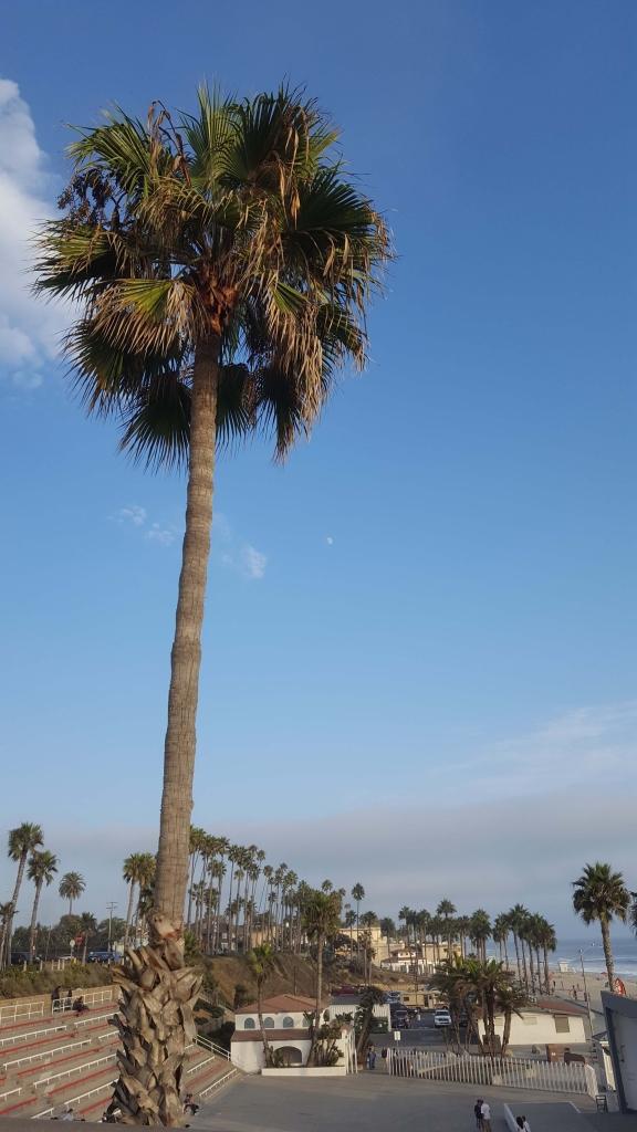 Blue-sky day at Oceanside Pier