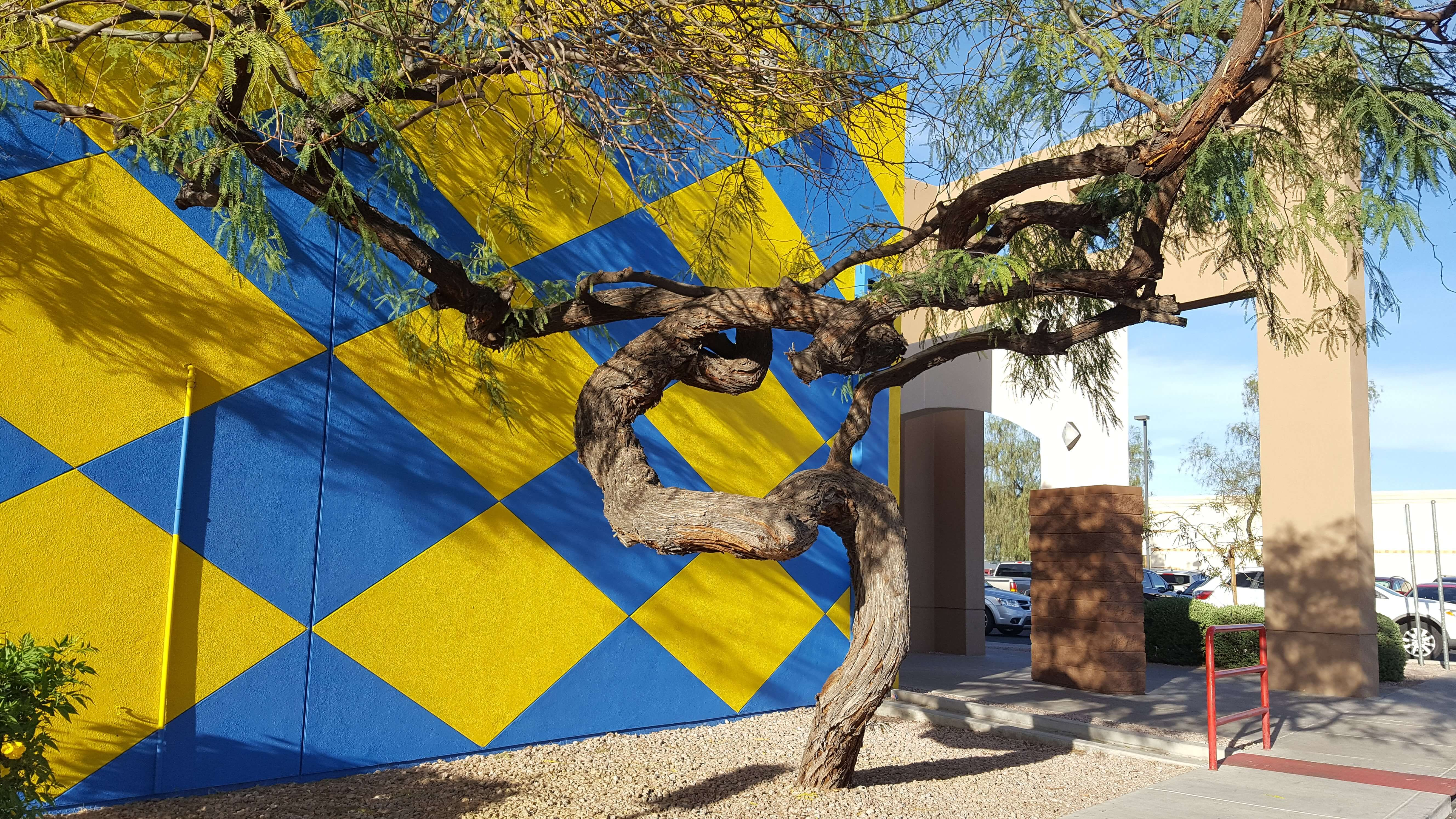 Cool tree and side of building, Apache Junction, AZ