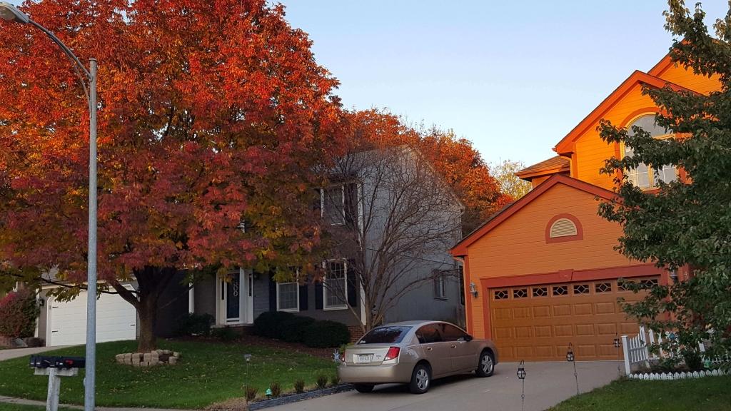Orange fall tree and house