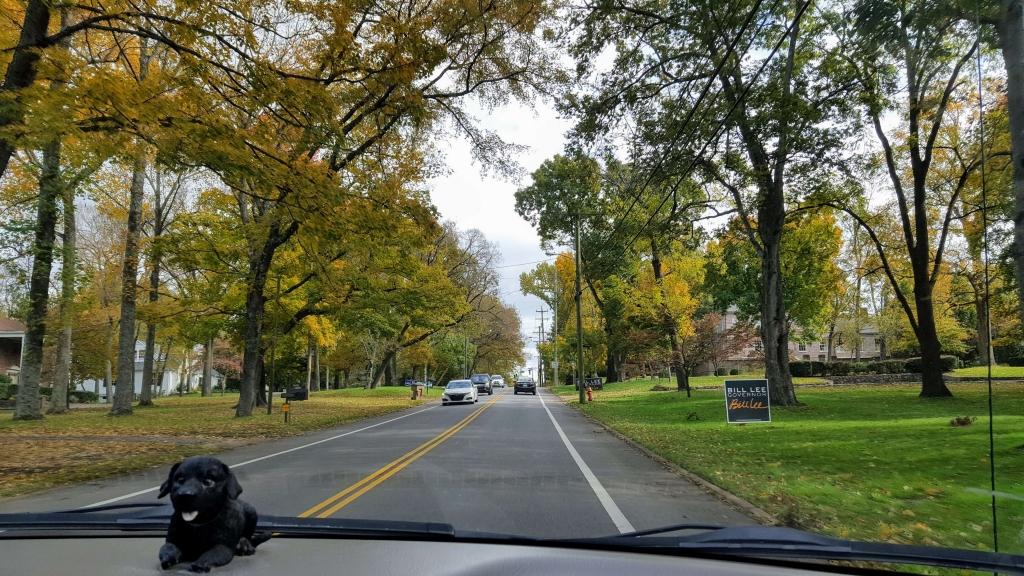 Beautiful Nashville neighborhood