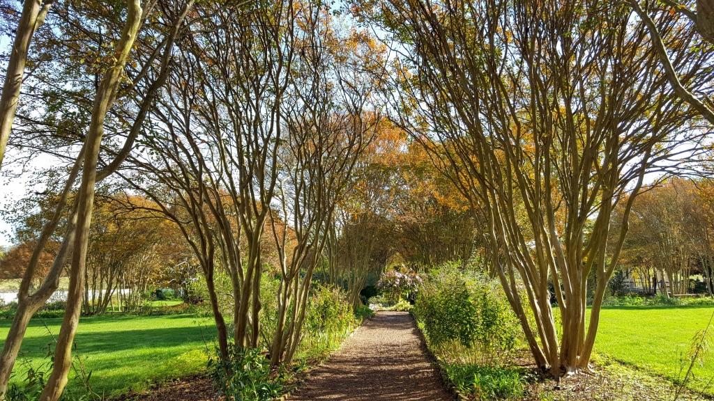 Garden path at The Hermitage, Nashville, TN