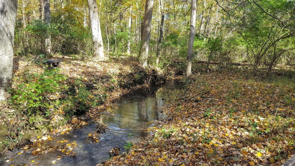 Creek on the Hermitage, Nashville, TN